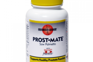 SAW PALMETTO SUPPORTS HEALTHY PROSTATE FUNCTION DIETARY SUPPLEMENT VEGETARIAN TABLETS