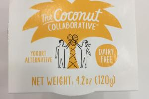 Dairy Free Yogurt