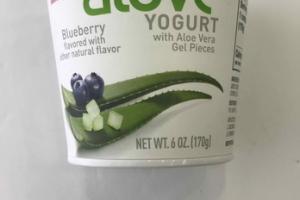 BLUEBERRY YOGURT WITH ALOE VERA GEL PIECES