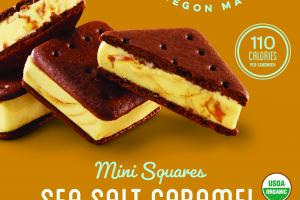 SEA SALT CARAMEL MINI SQUARES ICE CREAM SANDWICH