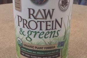 Raw Protein & Greens Organic Plant Formula