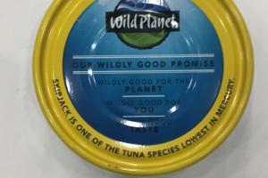 Skip Jack Wild Tuna