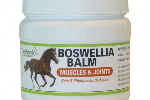 MUSCLES & JOINTS BOSWELLIA BALM