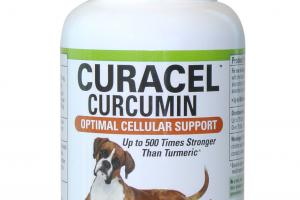 OPTIMAL CELLULAR SUPPORT SUPERIOR ABSORPTION CURACEL CURCUMIN SOFTGELS