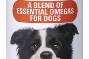 SKIN & COAT A BLEND OF ESSENTIAL OMEGAS FOR DOGS