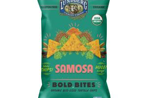 SAMOSA ORGANIC BITE-SIZED TORTILLA CHIPS