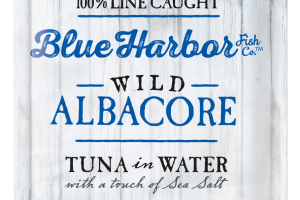 Wild Albacore Tuna In Water