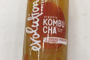 Organic Kombucha Sparkling Probiotic Tea