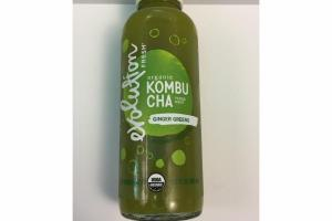 ORGANIC KOMBUCHA YERBA MATE GINGER GREENS SPARKING PROBIOTIC TEA