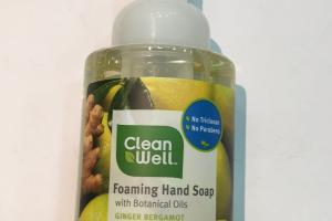 Foaming Hand Soap With Botanical Oils, Ginger Bergamot