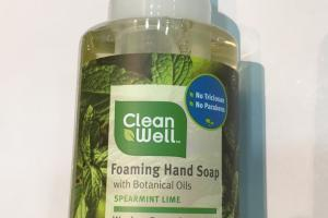 Foaming Hand Soap With Botanical Oils Spearmint Lime