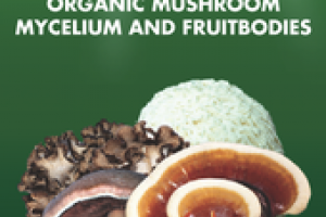 ORGANIC MUSHROOM MYCELIUM AND FRUITBODIES DAILY IMMUNE SUPPORT GLUTEN FREE DIETARY SUPPLEMENT FLUID OUNCE