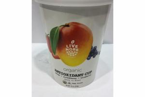 MANGO, STRAWBERRY, BLUEBERRY ORGANIC ANTIOXIDANT CUP