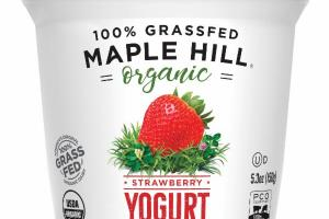 100% GRASSFED WHOLE MILK STRAWBERRY YOGURT