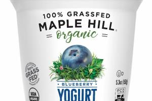 ORGANIC BLUEBERRY YOGURT WHOLE MILK