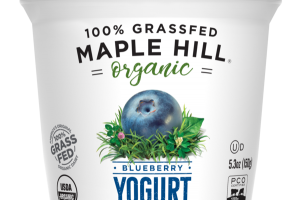 100% GRASSFED BLUEBERRY WHOLE MILK YOGURT