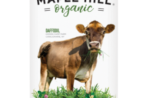 DAFFODIL 100% GRASSFED REDUCED FAT MILK