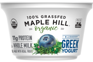 ORGANIC 100% GRASSFED BLUEBERRY GREEK YOGURT