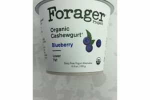 BLUEBERRY ORGANIC CASHEWGURT