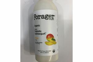 ORGANIC MANGO CULTURED PROBIOTIC CASHEWGURT