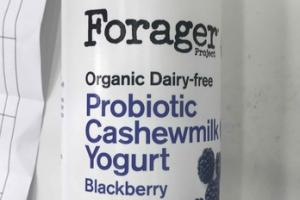 ORGANIC BLACKBERRY DAIRY-FREE PROBIOTIC CASHEWMILK YOGURT