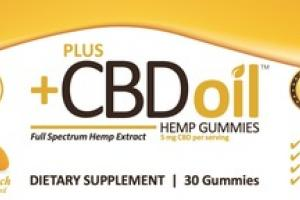 CITRUS PUNCH FULL SPECTRUM HEMP EXTRACT 5 MG CBD DIETARY SUPPLEMENT GUMMIES