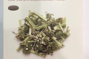 Female Qi-xue Balance Herbal Supplement