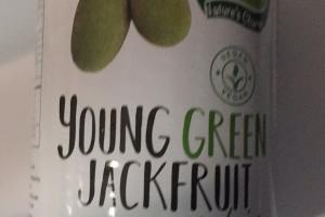 Young Green Jack Fruit
