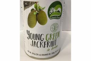 YOUNG GREEN JACKFRUIT IN BRINE