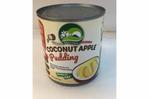 COCONUT APPLE PUDDING