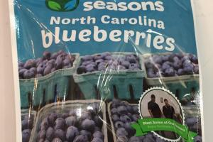 North Carolina Blueberries