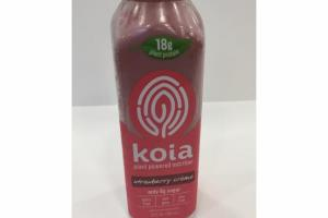 STRAWBERRY CREME PLANT POWERED PROTEIN DRINK