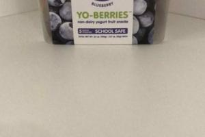BLUEBERRY NON-DAIRY YOGURT FRUIT SNACKS