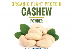 CASHEW ORGANIC PLANT PROTEIN POWDER