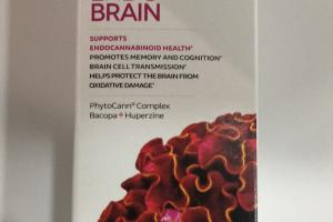 Endo Brain Beyond Cbd Dietary Supplement