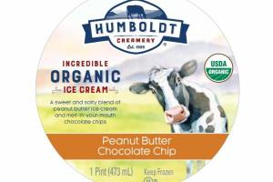 PEANUT BUTTER CHOCOLATE CHIP INCREDIBLE ORGANIC ICE CREAM