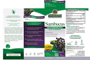 BLACK ELDERBERRY SUPPORTS A HEALTHY IMMUNE SYSTEM SAMBUCUS DIETARY SUPPLEMENT