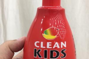 Spray Detangler