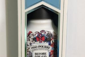 Before-you-go Toilet Spray