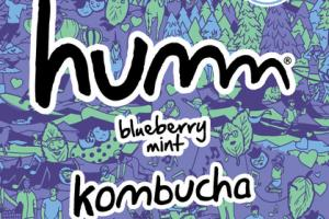 BLUEBERRY MINT KOMBUCHA