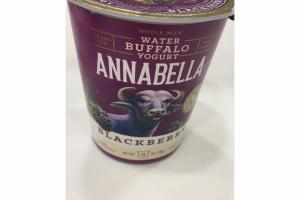 BLACKBERRY WHOLE MILK WATER BUFFALO YOGURT