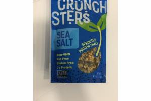 SEA SALT SPROUTED PROTEIN SNACK