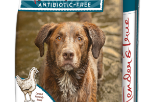 ANTIBIOTIC-FREE CHICKEN & BROWN RICE RECIPE PREMIUM DOG FOOD