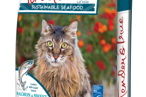 WILD ALASKAN SALMON & SWEET POTATO RECIPE SUSTAINABLE SEAFOOD PREMIUM CAT FOOD
