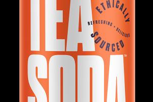 PEACH, BLACKBERRY, LIME, CILANTRO ORGANIC GREEN TEA SODA
