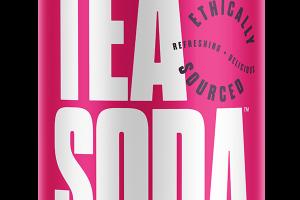 MINT TEA HIBISCUS LEMONADE CAFFEINE FREE TEA SODA