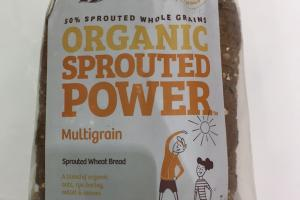 Organic Sprouted Powder