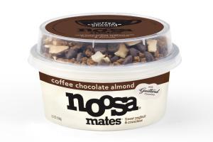Coffee Chocolate Almond Yoghurt