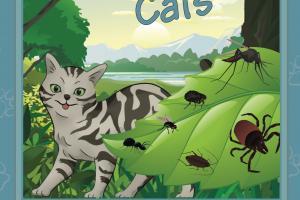 Flea & Tick 4 Cats