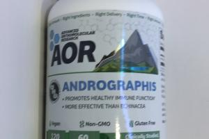 Andrographis Dietary Supplement